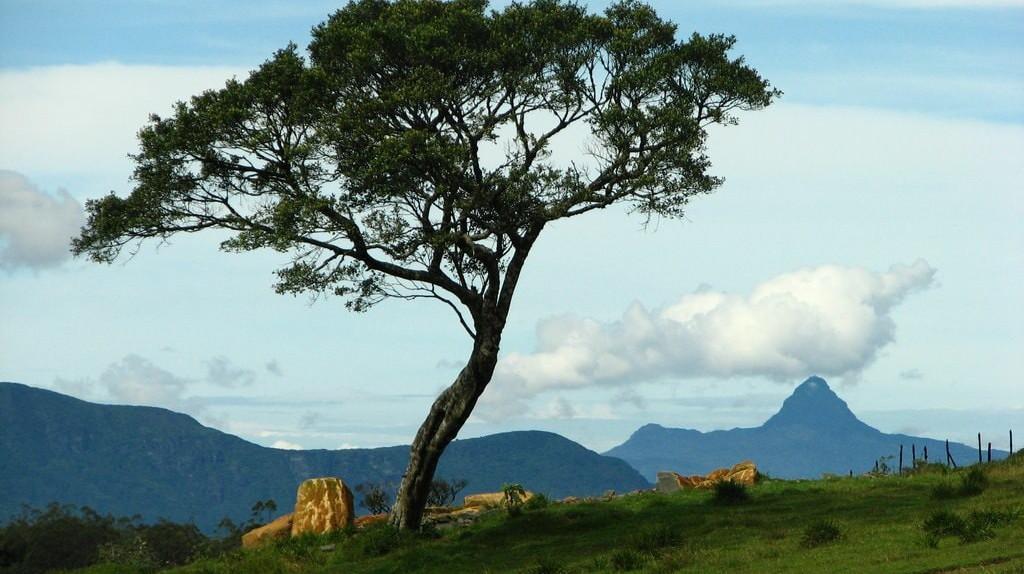 The mountains of Sri Lanka