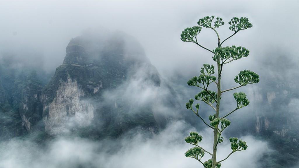 Tepoztlán mountain view