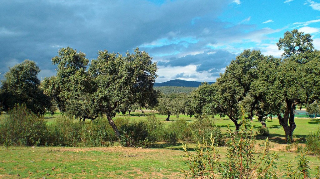 Extremadura is still Spain's most underrated travel destination