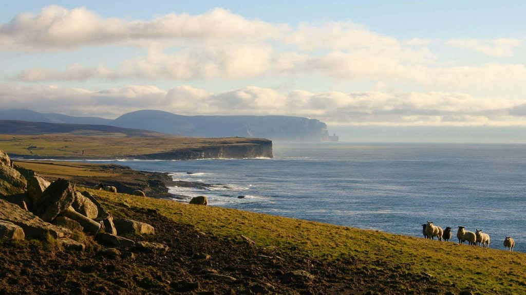 West Coast Of Orkney