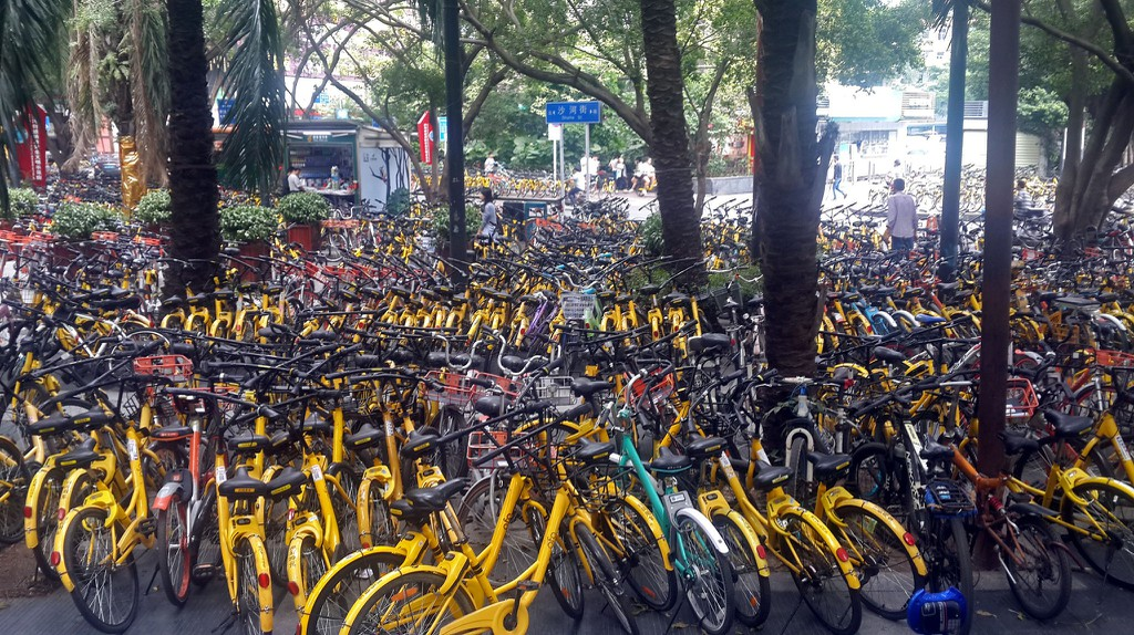 Why Many Cities in China Are Home to Bicycle Graveyards