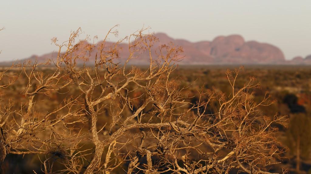 Kata Tjuta in the Northern Territory