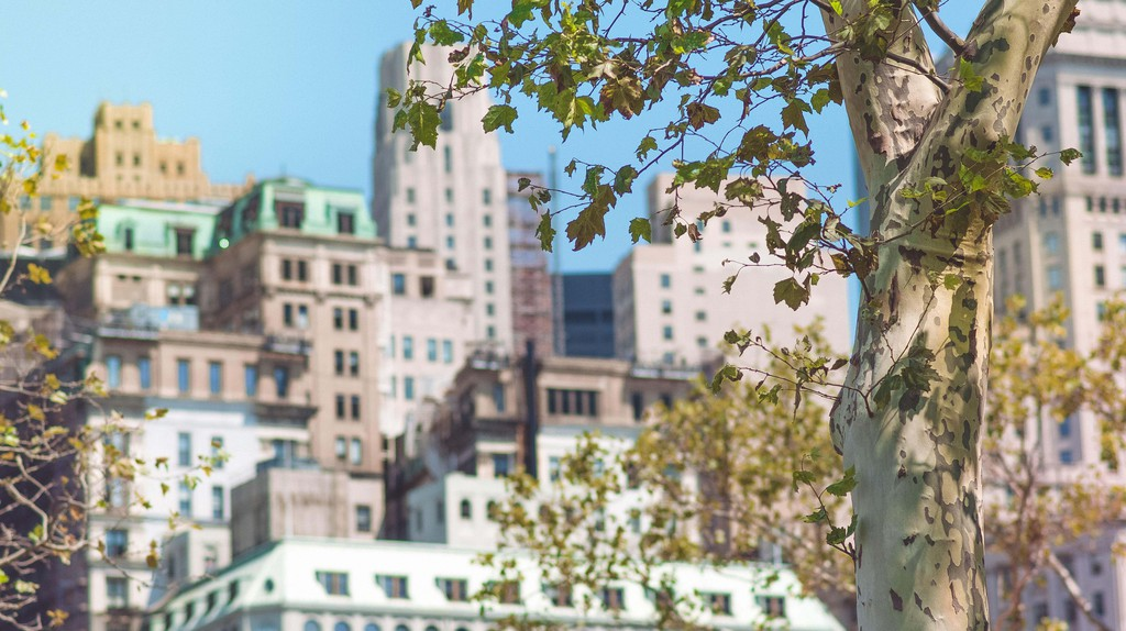 Manhattan's Upper East Side as seen from Central Park