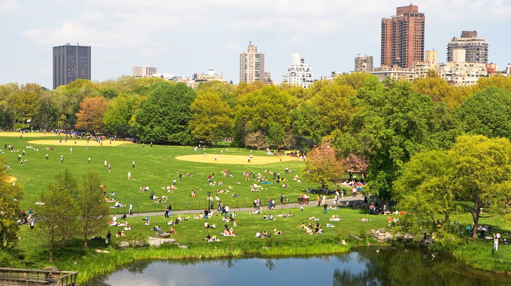 Relax in Central Park while visiting New York City