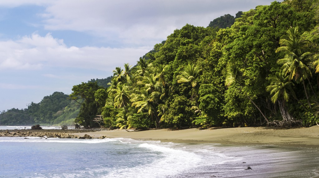 Corcovado National Park meets the beach at Osa Peninsula in Costa Rica