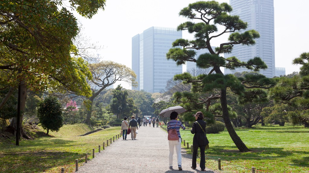 Ginza is one of Tokyo's most fashionable neighbourhoods