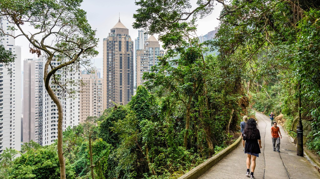 People take a stroll on Old Peak Road, a walking path between the Mid-Levels and Victoria Peak in Hong Kong