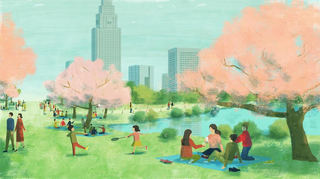 Blossoms, Transience and Office Politics: Hanami Season in Japan