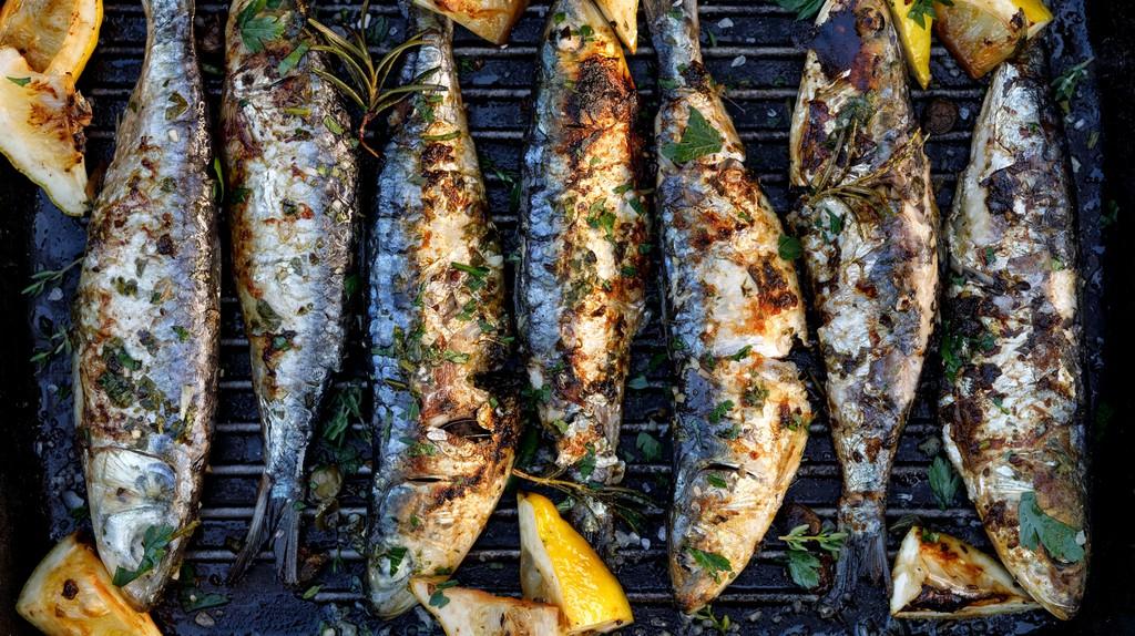 Freshly grilled sardines