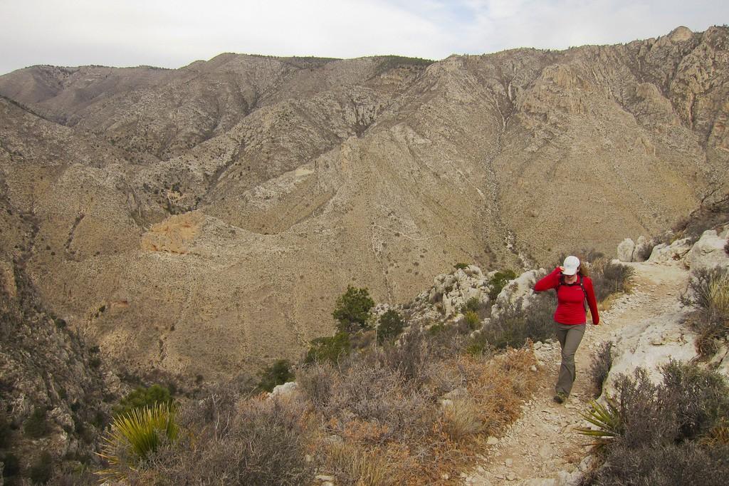 Parque Nacional de las Montañas de Guadalupe