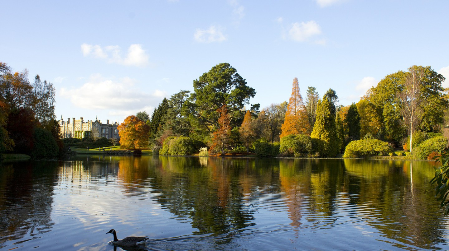 Sheffield Park |© Pixabay