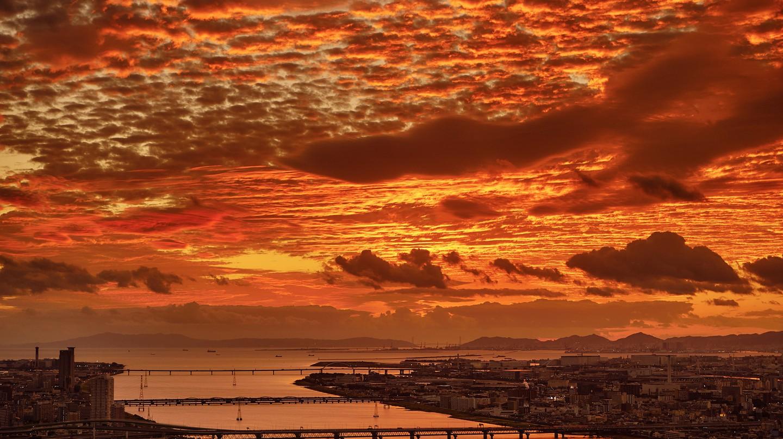 Sunset over Osaka   © Pedro Szekely/Flickr