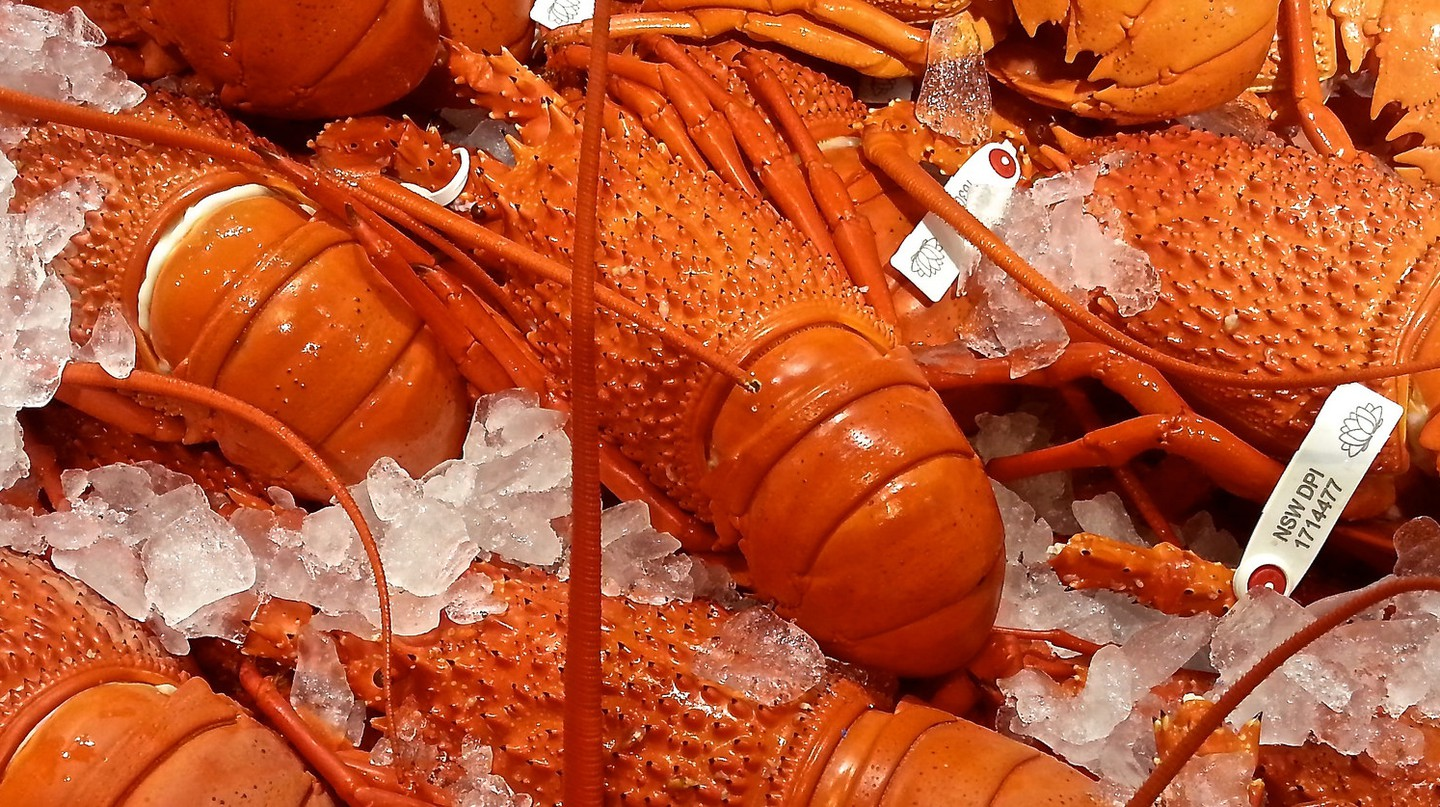 Fresh Lobster | © llee_wu / flickr