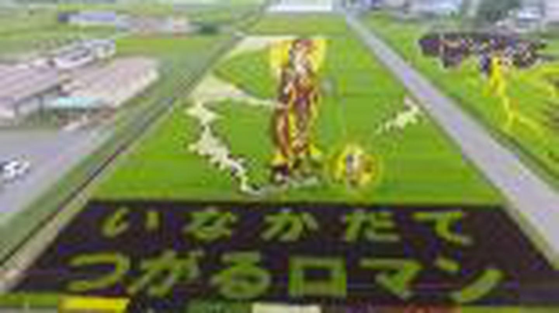 Japan's Rice Paddy Art: Revitalizing Inakadate