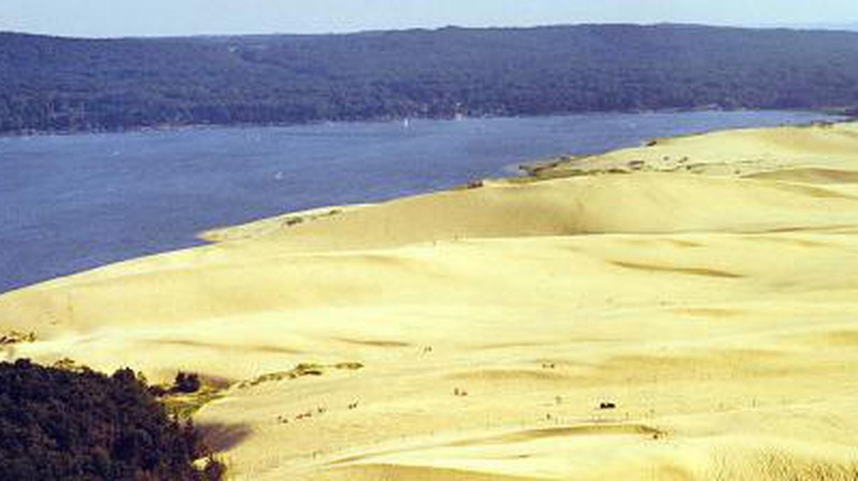 Top 10 Restaurants In Silver Lake Sand Dunes, Michigan