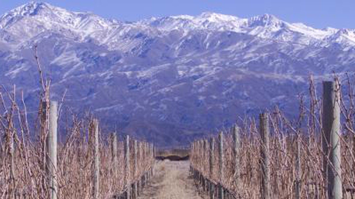 10 Greatest Wineries In Argentina