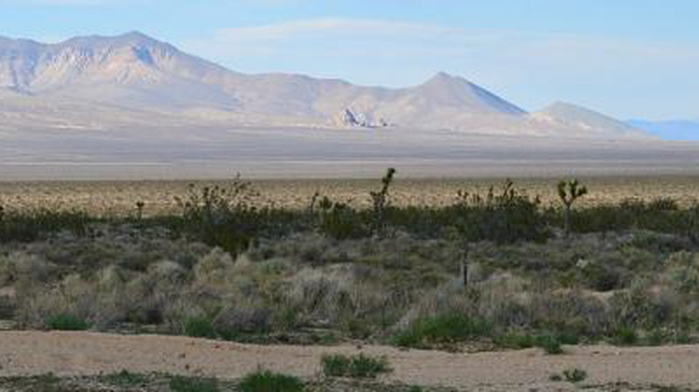 Top Desert Day Trips In Los Angeles, California