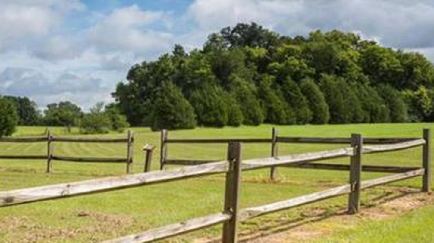 5 Unmissable Attractions In & Around New Albany, Mississippi