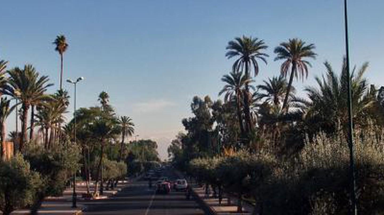 The 10 Best Restaurants In Gueliz, Marrakech