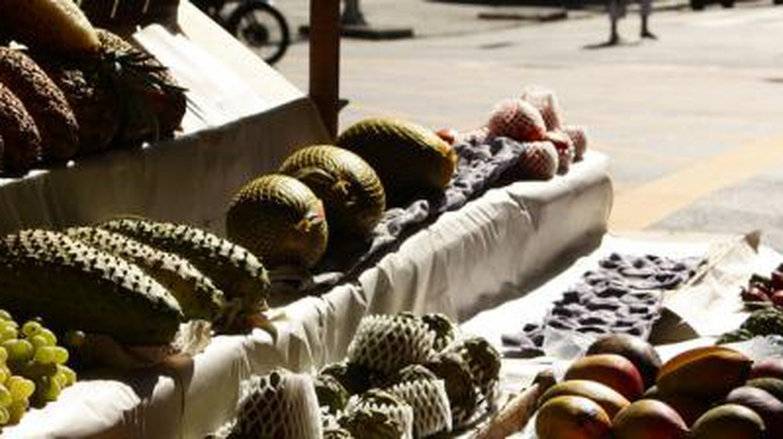 The Best Markets In Rio de Janeiro