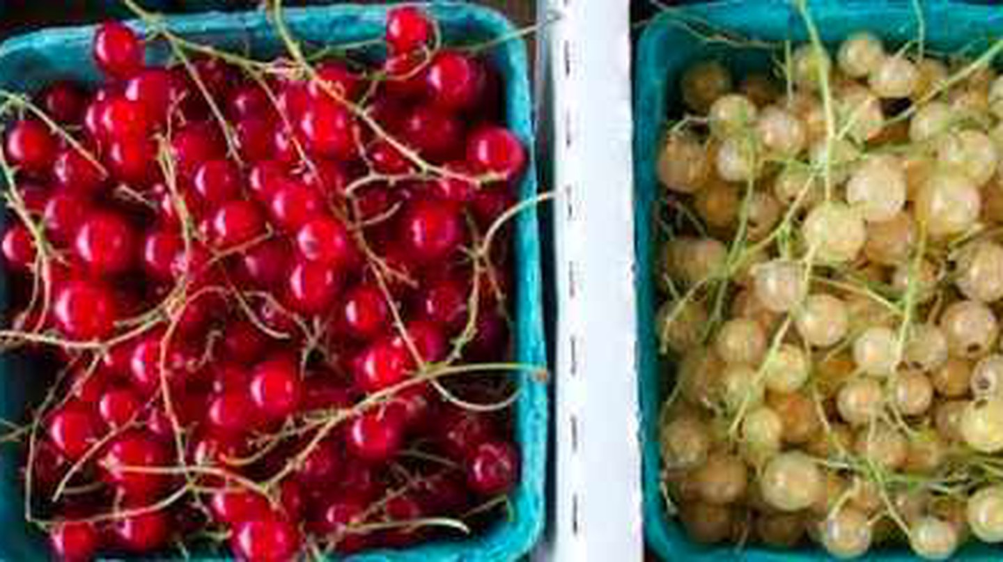 The Top  Farmers' Markets In Toronto