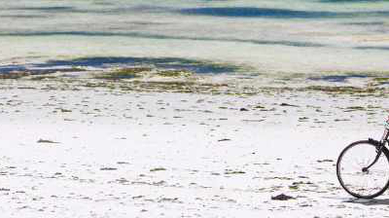 Alternative Adventures In Zanzibar