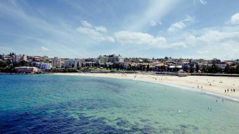 The Best Beachfront Bars In Sydney