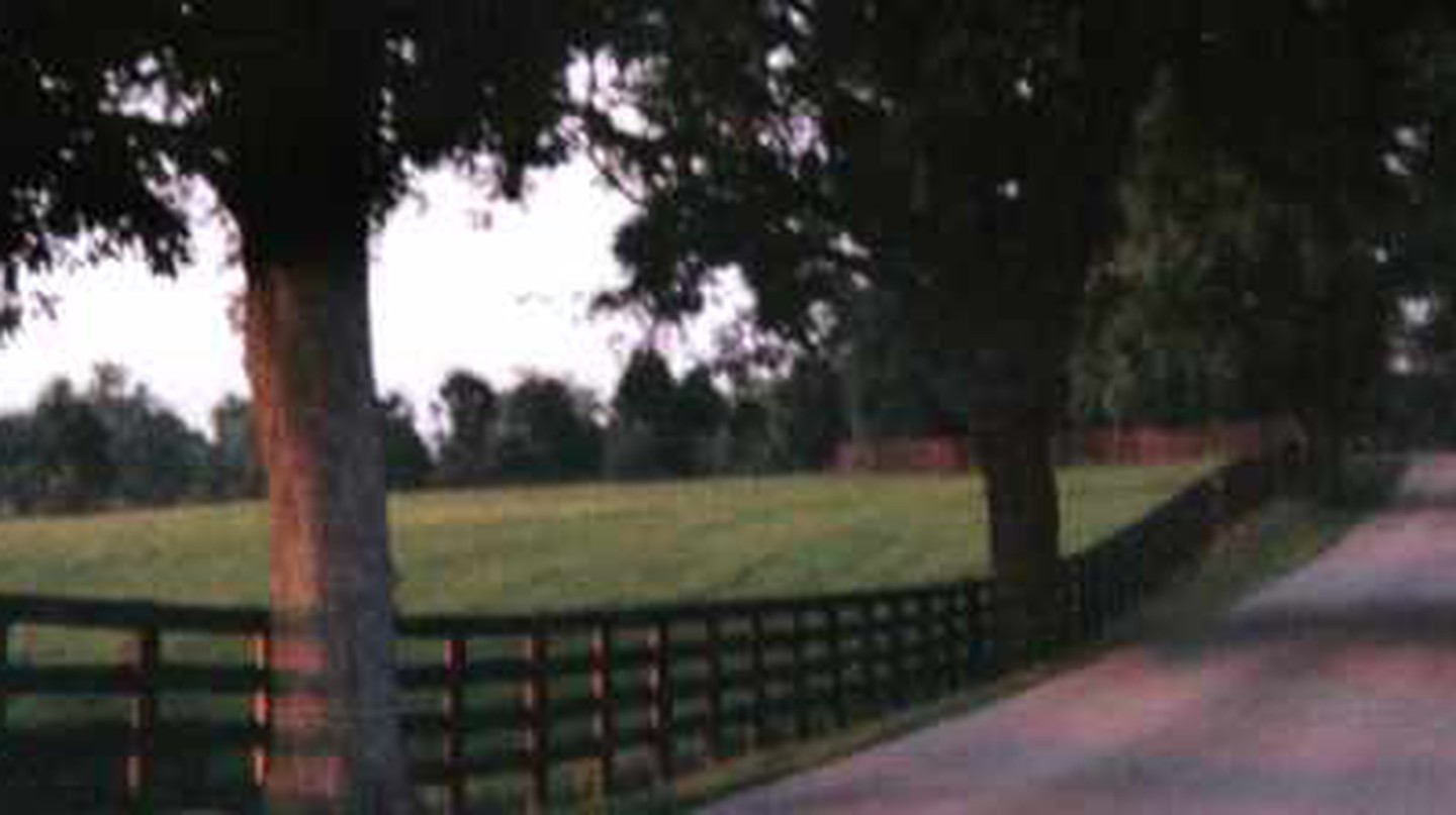 The Best Parks In Lexington, Kentucky