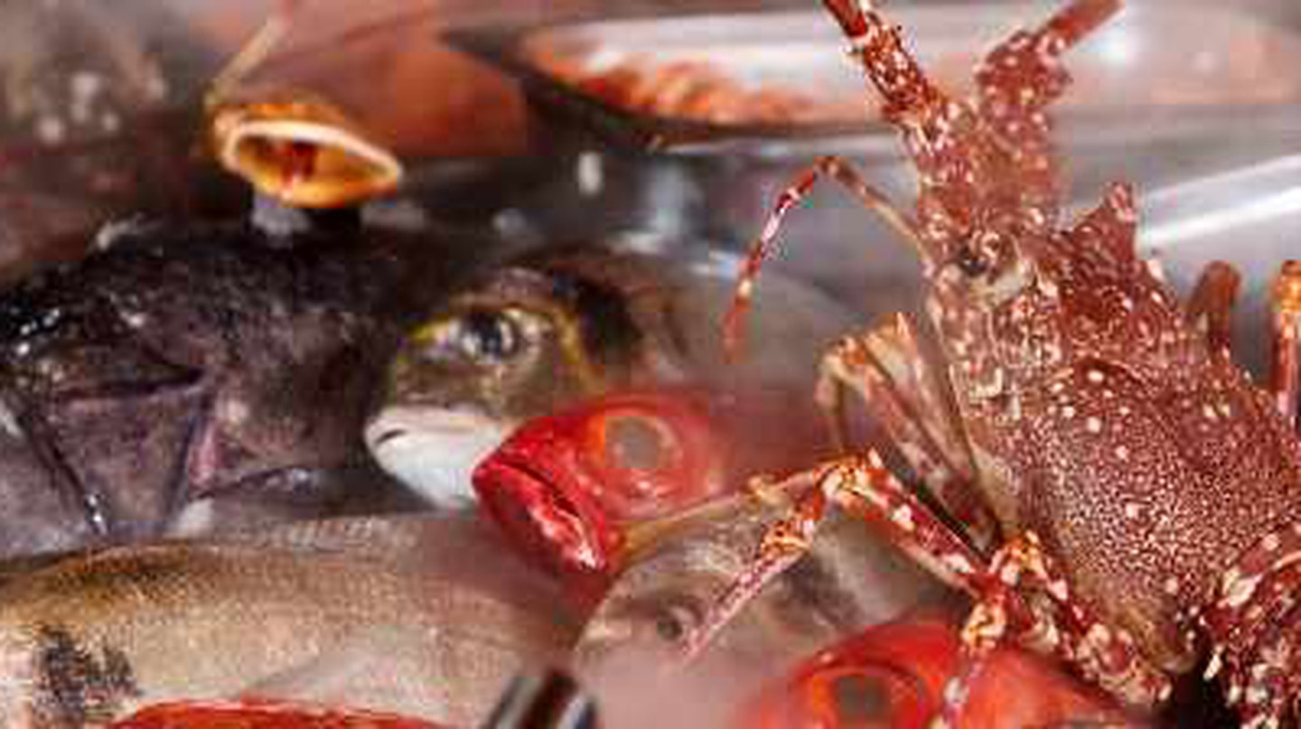 Catch of the Day: The Best Seafood Restaurants in Lisbon, Portugal