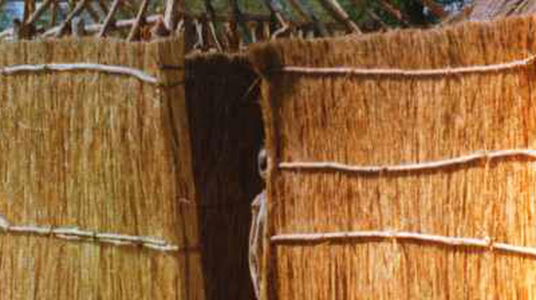 African Vernacular Architecture: Documentation For Preservation