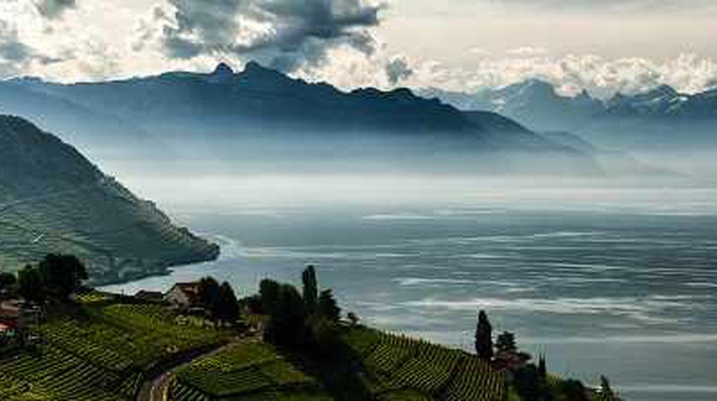 Amazing Swiss Wine Regions To Discover
