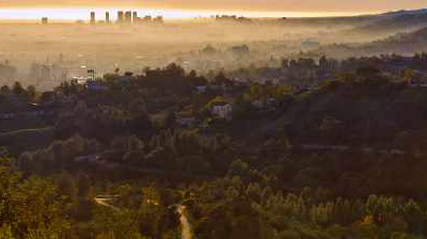 Top Los Angeles Parks For Appreciating Autumn's Beauty