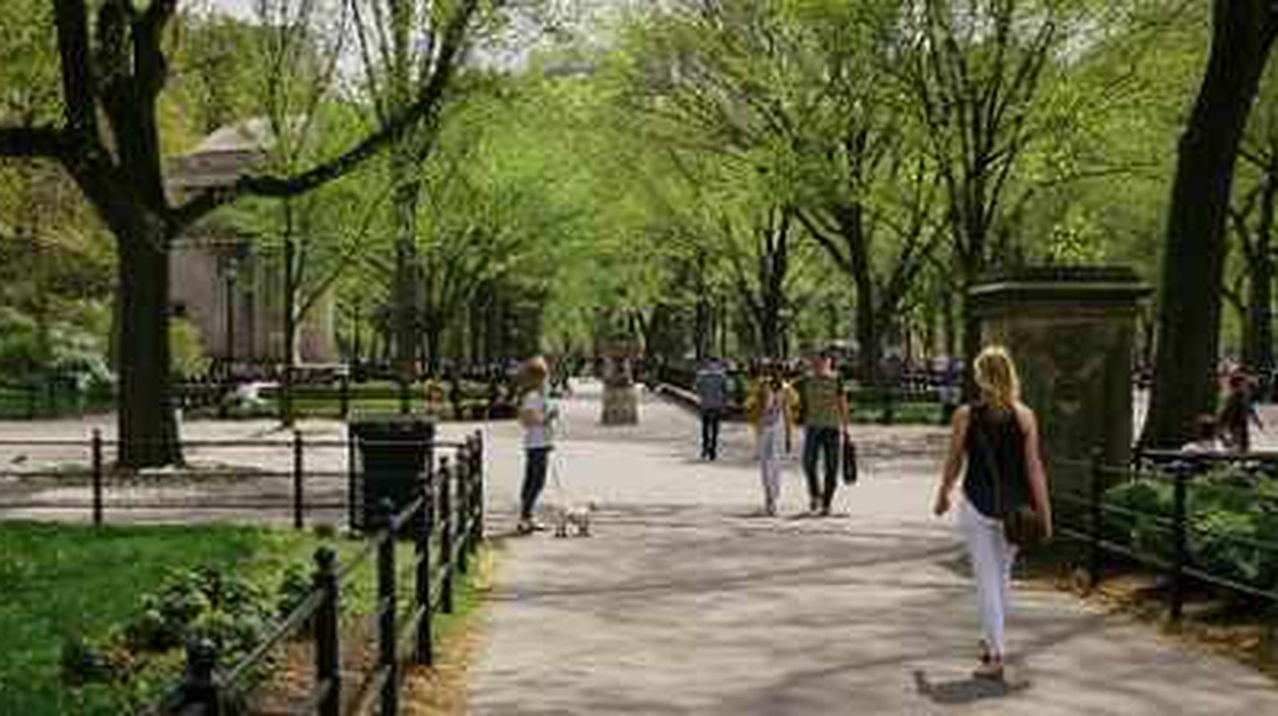 10 Fun Places To Explore On A Sunny Day In New York City