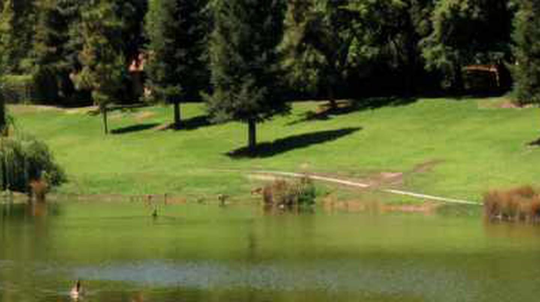 The Prettiest Parks in Fresno