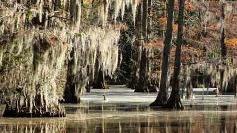 The 10 Best Restaurants In Sumter, South Carolina