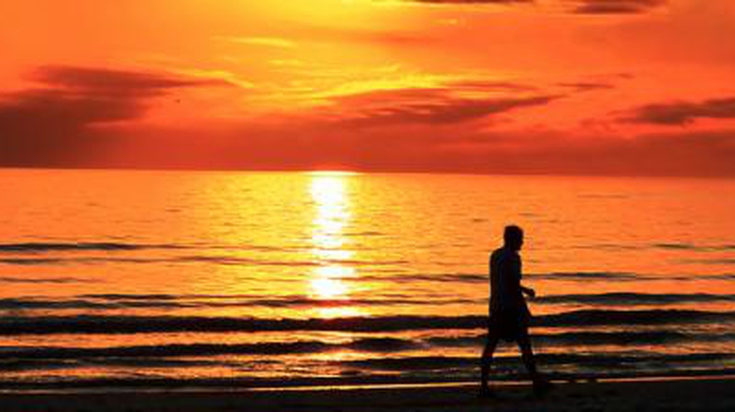 The Top 10 Things to Do and See in Fort Myers, Florida