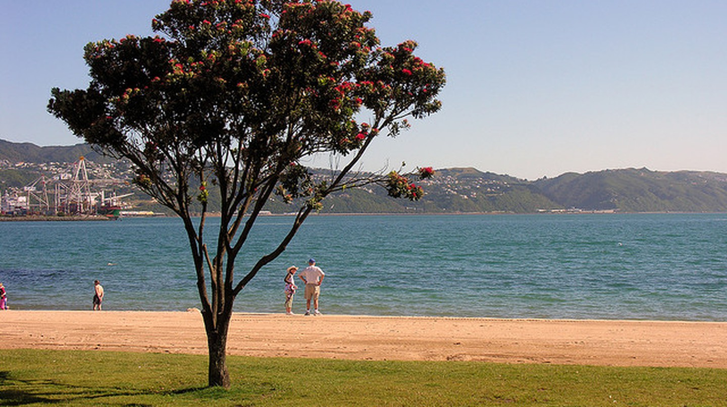Elements of the New Zealand summer archetype, Oriental Bay | © Phillip Capper/flickr