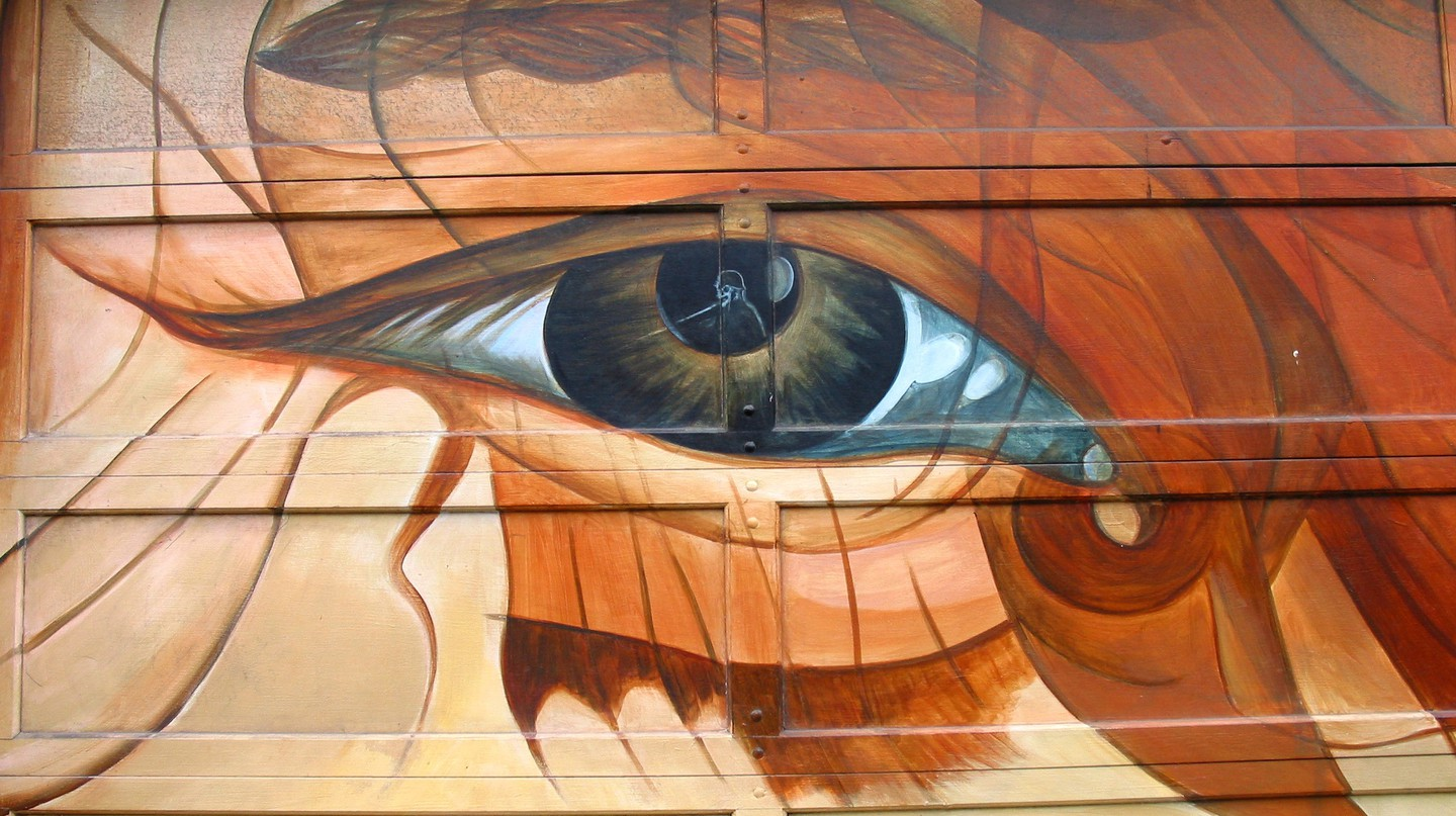 Looking At The Mission District Through Precita Eyes