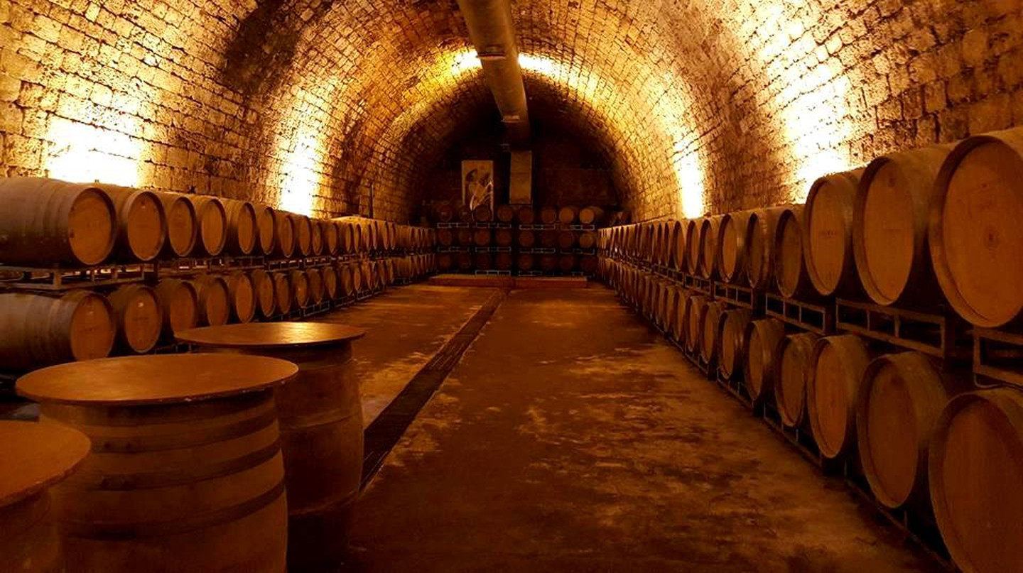 A Wine Lover's Guide To Israel's Wine Tasting Tours