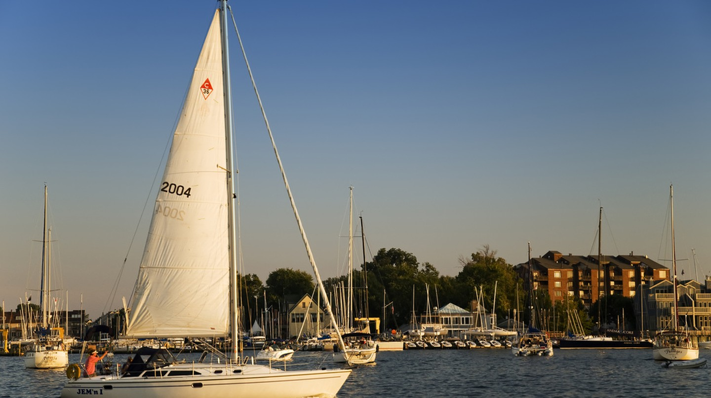 Annapolis Harbor © Jeff Weese