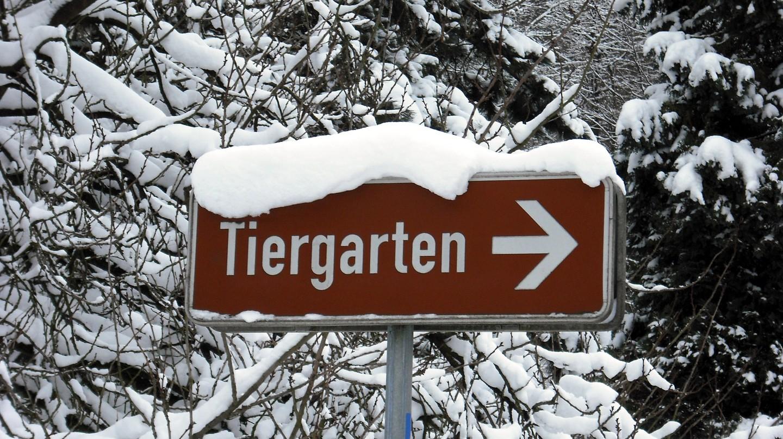Tiergarten - Kleve, Deutschland | © Vincent de Groot / wikicommons