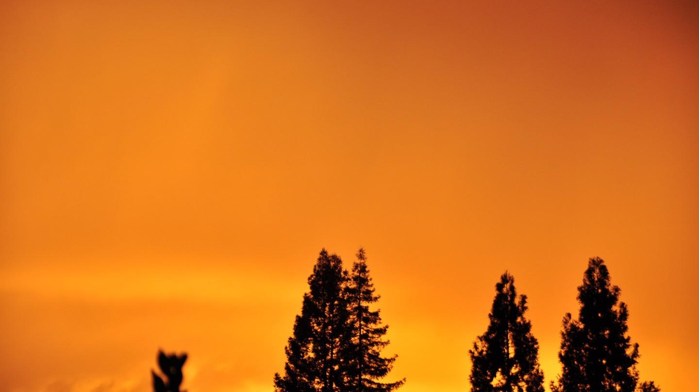 Sunset over Danville | © Eric Molina/Flickr
