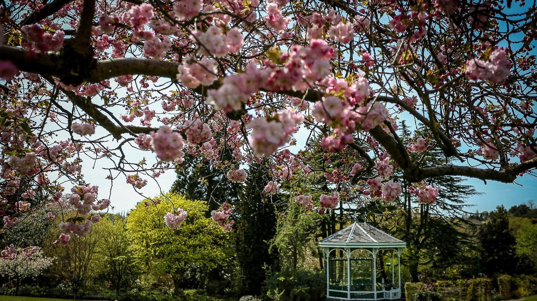 © Birmingham Botanical Gardens