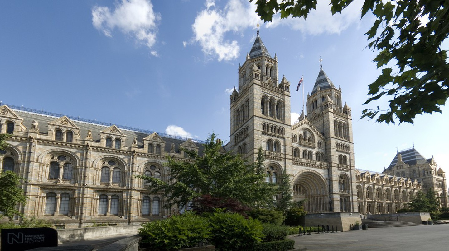 An exterior view of the main entrance to the Natural History Museum, London. | Courtesy of Trustees of the Natural History Museum, London