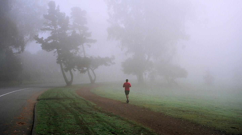 Golden Gate Park | © Michael Fraley/Flickr