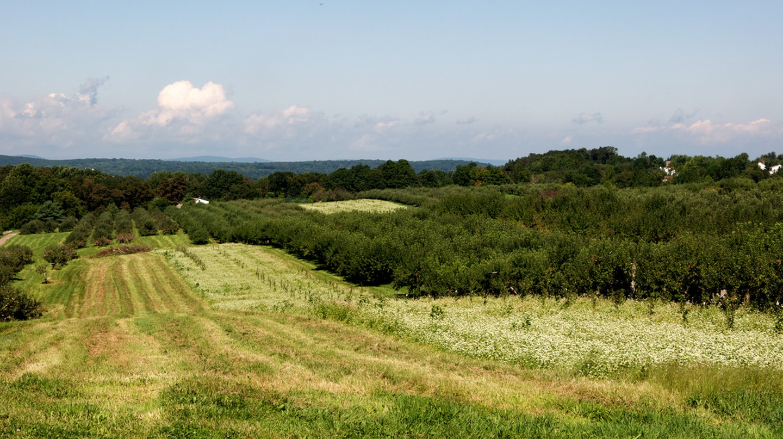 hudson valley| © Derrick Noh/flickr