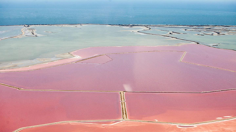 Camargue Salt Flats | © Jeroen Komen/WikiCommons