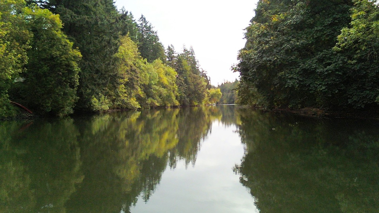 Tualatin River   © M.O. Stevens/WikiCommons