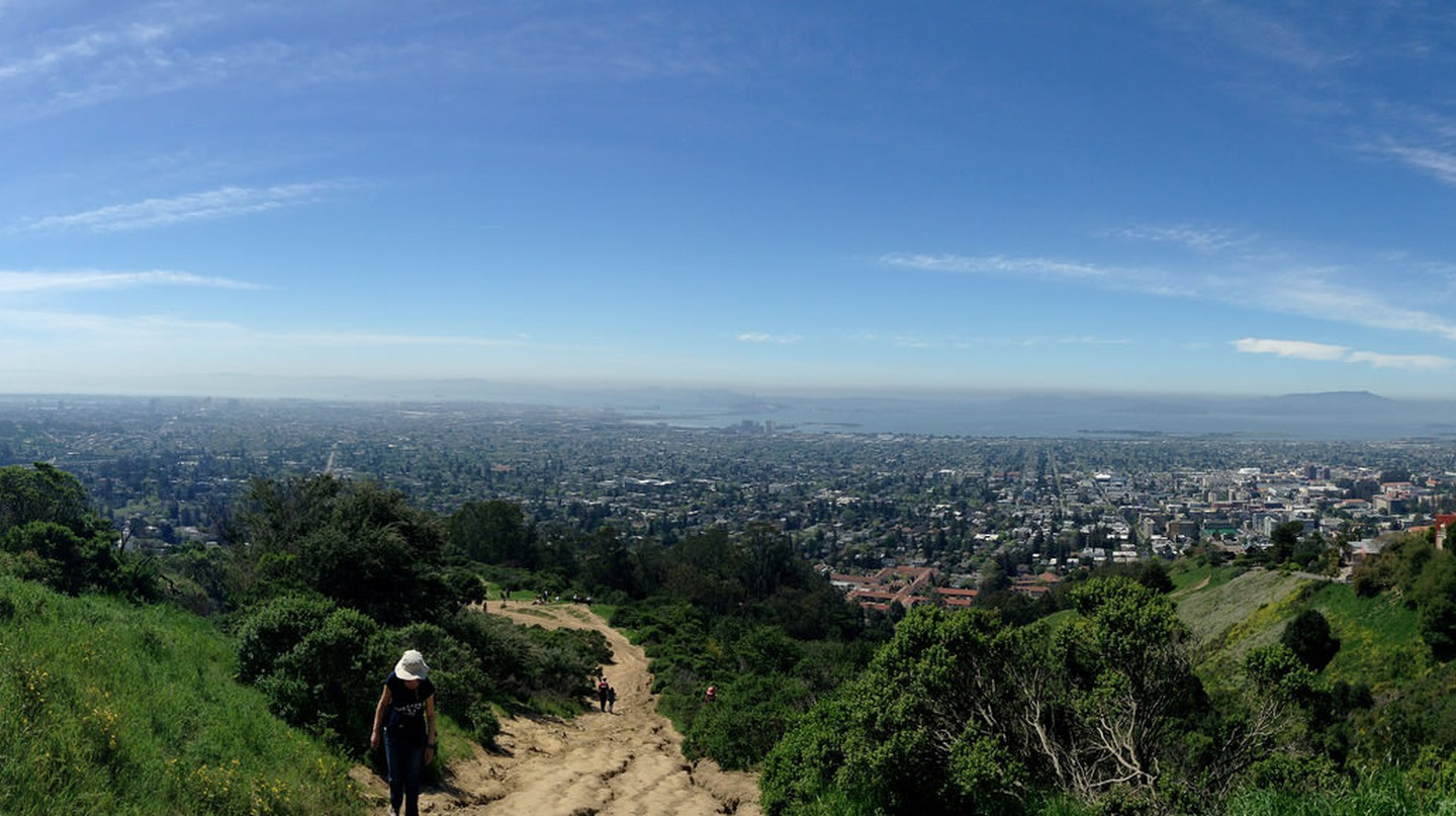 The Best Hikes In Berkeley, California