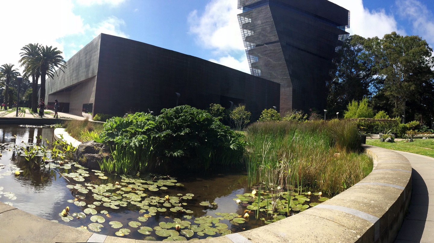 De Young Museum © Courtney Stack